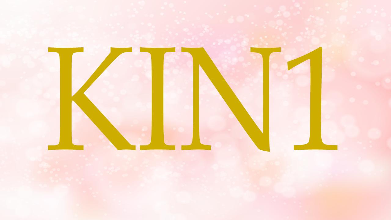 KIN1のエネルギー・有名人|赤い龍×赤い龍×音1×黒KIN×角KIN