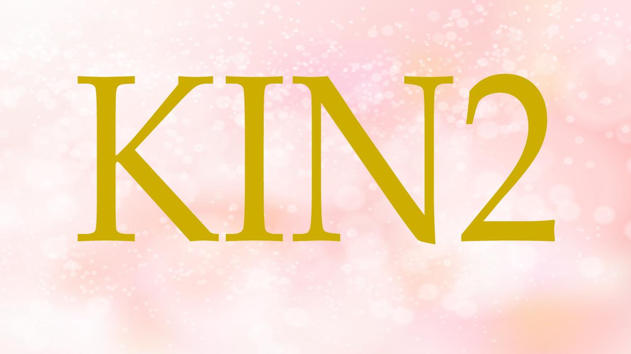 KIN2のエネルギー・有名人|白い風×赤い龍×音2