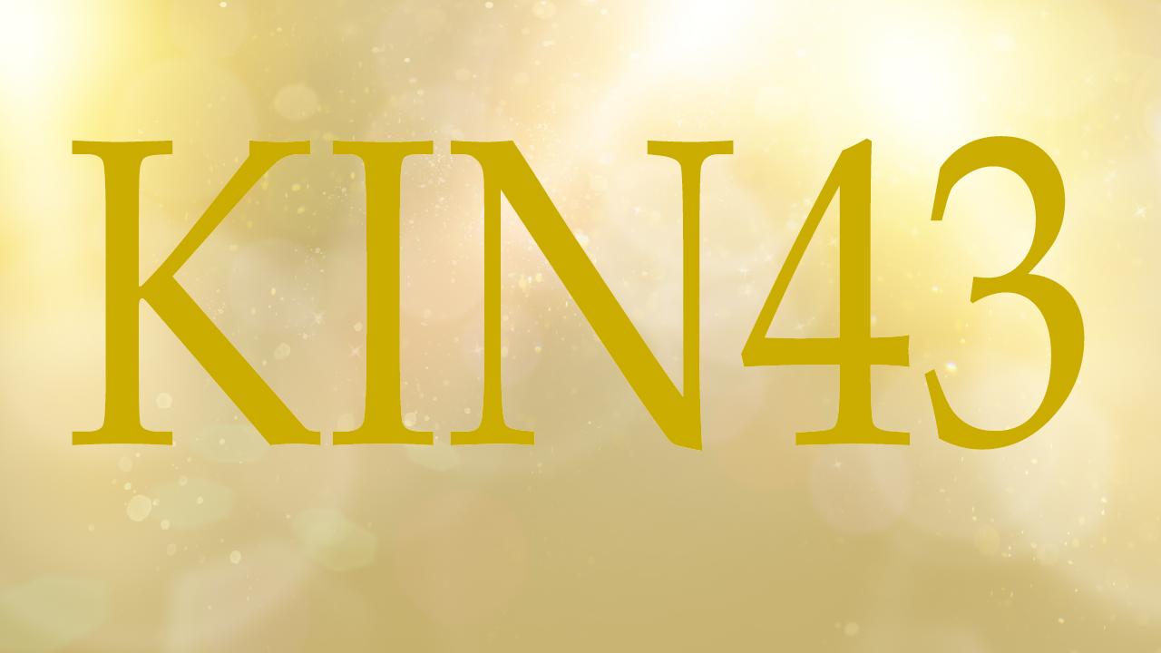 KIN43のエネルギー・有名人|青い夜×黄色い太陽×音4×黒KIN