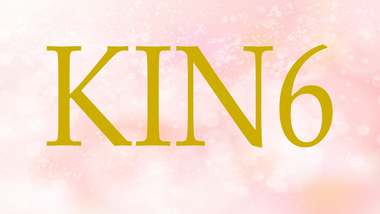 KIN6のエネルギー・有名人|白い世界の橋渡し×赤い龍×音6