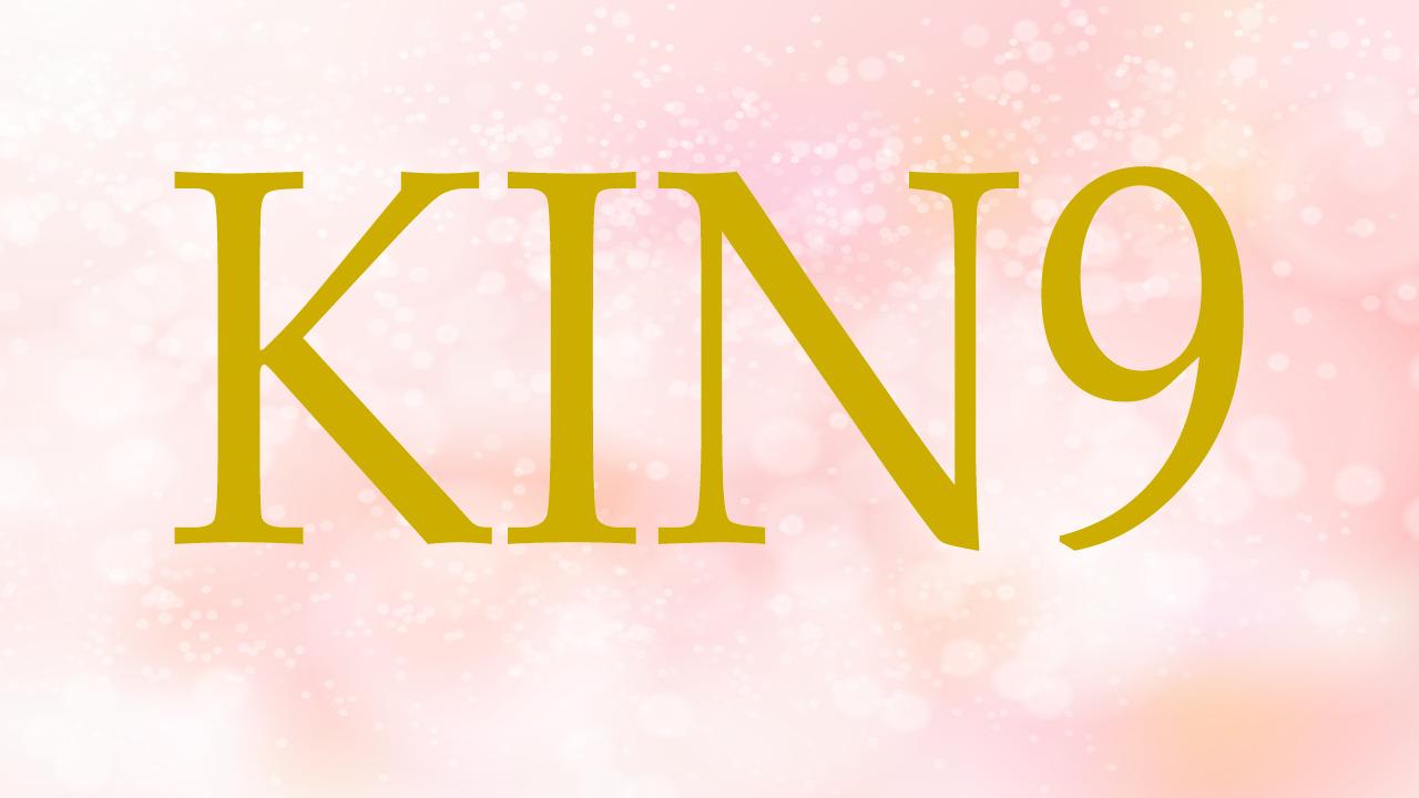 KIN9のエネルギー・有名人|赤い月×赤い龍×音9